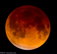 4/15/2014 Lunar Eclipse viewed from South FLorida, USA.